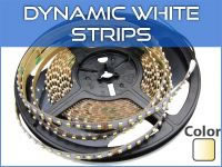 Dynamic White LED Strip