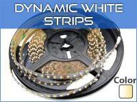 Dynamic White LED Strip