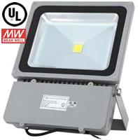100W FloodMAX LED Flood Light