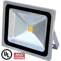50W FloodMAX LED Flood Light