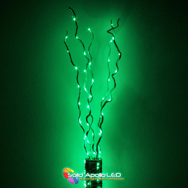 pretty nice c0658 cfff6 Green LED String Light 65ft